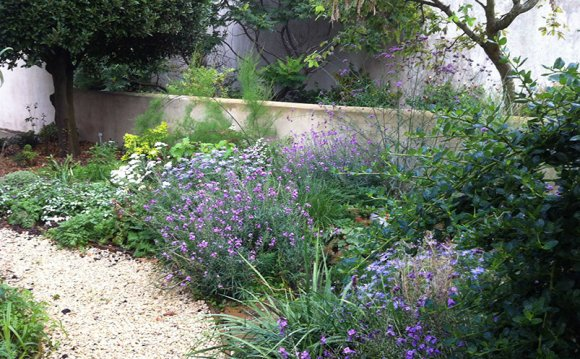 Brighton Garden Designers