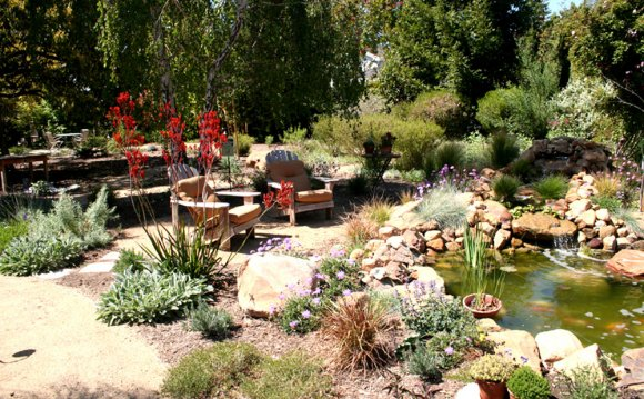 Gallery of Drought Tolerant