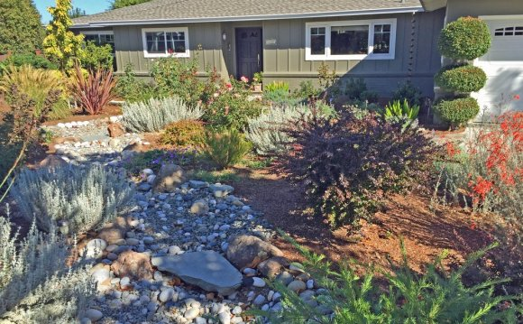 Patty Walters Landscape Design