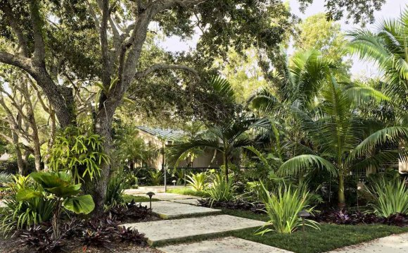 Image of: Tropical Landscape