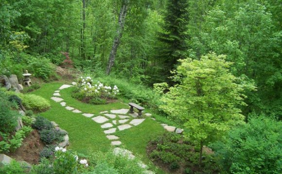 20 Beautiful Woodland Garden