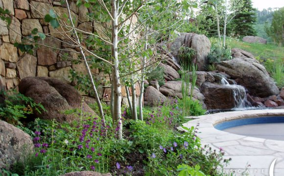 Mountain Landscape Design