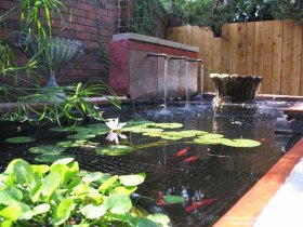 backyard pond with waterfalls and garden decorations