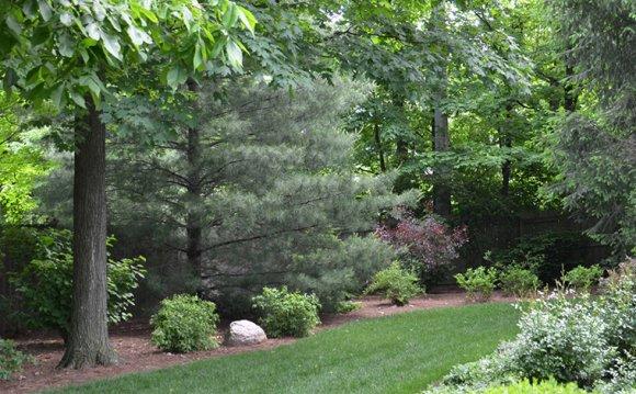Cincinnati Landscape Design Landscape Design