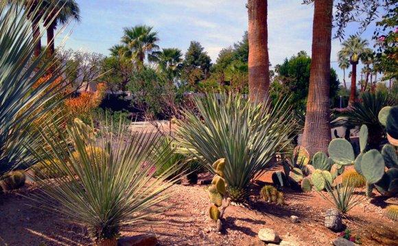Landscaping Design Phoenix Landscape Design