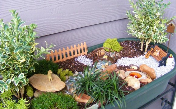 MINI Garden Landscape Design