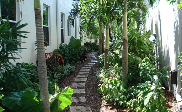 South Florida Landscape Design