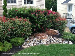 landscaping with rocks and colorful shrubs