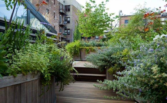 Landscape Design New York