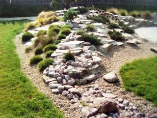 rocks garden with green plants