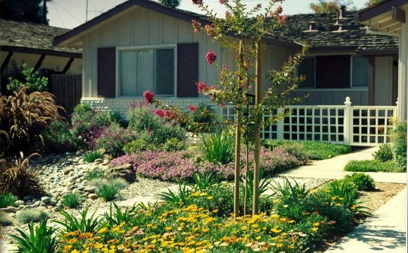 Low water Landscape Design Ideas