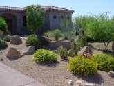 Desert Landscaping Design