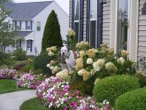 Front yard Landscape Design plans free
