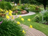 Landscaping Design Services