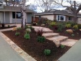 Native Plant Landscape Design