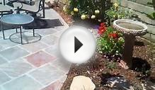 Camarillo Landscape Design, Sprinklers, Pavers, Plants