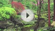 Evoking Native Landscape Using Japanese Garden Principles