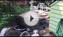 Goldfish Pond Installation In Rochester NY Testimonial For