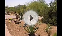 How To Buid Desert Landscaping