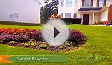 How to water flowers | Landscape Tips Ideas & Design | by