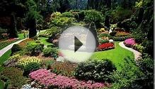Landscape Design for Beginners