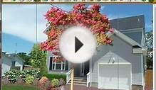 Landscape Design Imaging Software Installing Rocks and