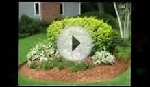 Landscape Design Maintenance