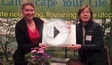 Landscape Your Life Charleston Garden Design Fun!