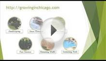 Landscaping Chicago | Design, Installation, Maintenance