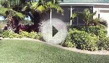 Low Maintenance Front yard tropical landscape by