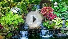 "TROPICAL LANDSCAPE IDEAS - WATER CAN BRING ""HEAVEN"" TO"