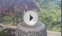 Ventura Landscape Design - Bubbler Fountain, Decorative